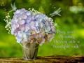 Wishing You A Beautiful Week My Friend ♥ - whatsupbugs fan art