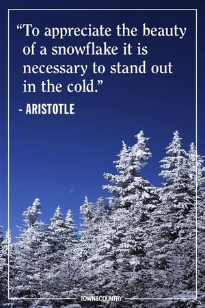 winter quotes❄