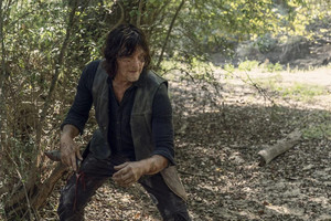10x10 ~ Stalker ~ Daryl