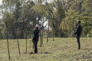 10x14 ~ Look at the hoa ~ Carol and Negan
