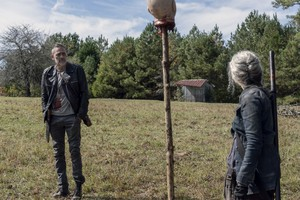10x14 ~ Look at the Flowers ~ Carol and Negan