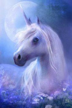 Beautiful Unicorns 💖