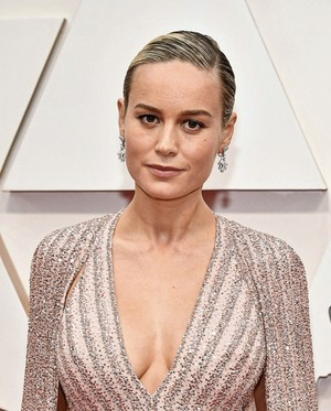 Brie Larson 92nd Annual Academy Awards February 9, 2020