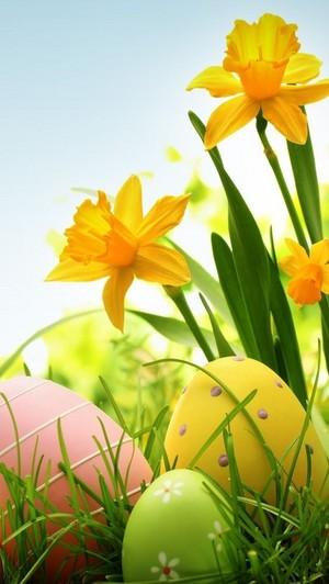 Happy Easter Bat🥚🐰🍫🐤🌸
