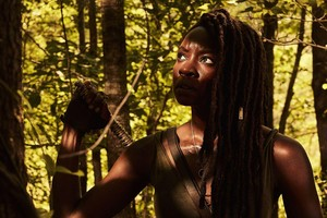 Season 10 Character Portrait ~ Michonne