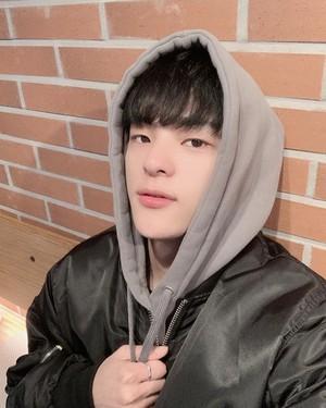 Woojin