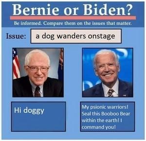 Bernie Or Biden Meme