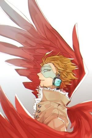 *Wing Hero: Hawks*