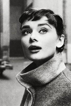 Audrey Hepburn❤🌹