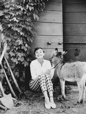 Beautiful Audrey 💕