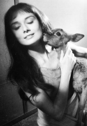 Beautiful Audrey 💕