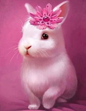 Cute bunnies🐰