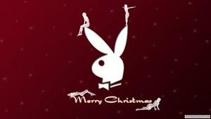 Playboy Merry Christmas