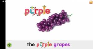 Starfall Purple