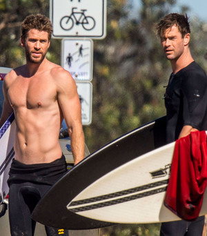 The Hemsworth Bros. (Aussies in LA)