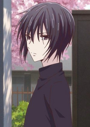 *Akito Sohma : Fruits Basket*