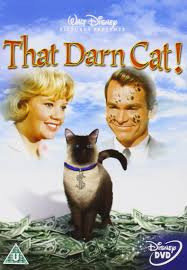 1965 disney Film, That Darn Darn Cat, On DVD