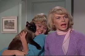 1965 迪士尼 Film, That Darn Cat