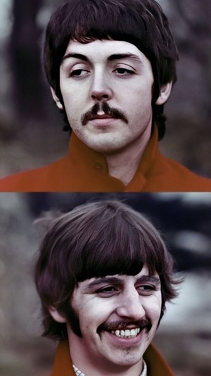 Penny Lane/Paul and Ringo