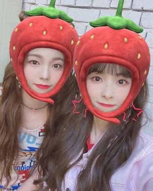 Ayaka & Miihi