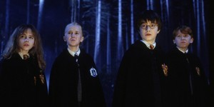 Golden Trio and Draco