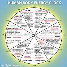 Human Energy Body Clock