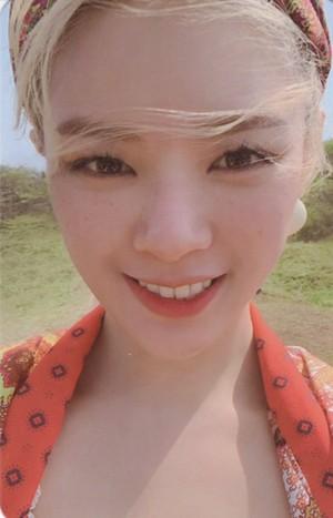 zaidi and zaidi - Photocard