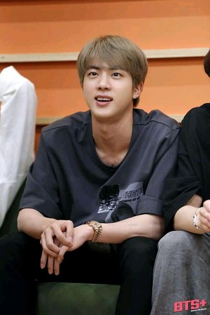 Run BTS! (Jin)