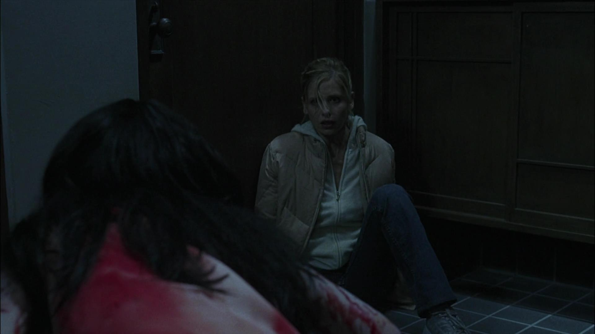 Sarah Michelle Gellar In The Grudge 2004 Horror Actresses Photo 43438316 Fanpop