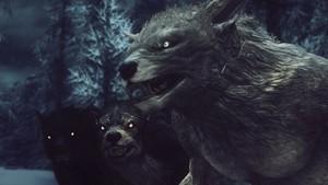 Skyrim - Werewolf Pack