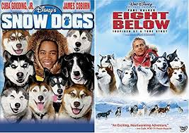 Snow Dogs And Eight Below On DVD