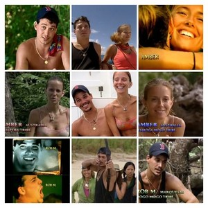 Survivor All Stars Collage #1