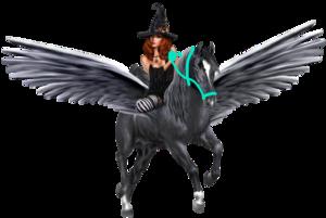 Witch riding an Pegasus