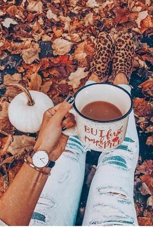 🍁 Autumn Vibes 🍁