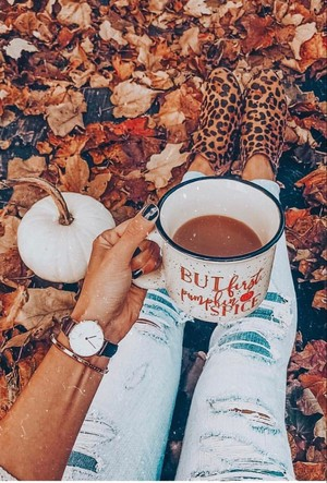 🍁 Autumn Vibes 🍁