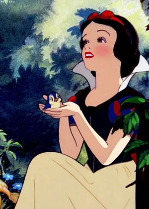 *Snow White : Snow White and The Seven Dwarfs*
