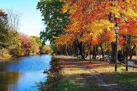 Autumn dag