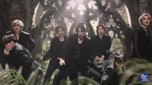 BTS || Black angsa, swan
