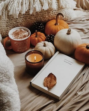 Cozy Autumn Vibes For あなた 🍁