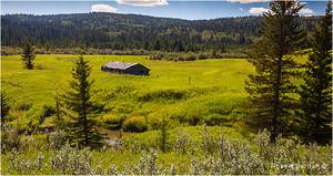 Cypress Hills Interprovincial Park, Saskatchewan