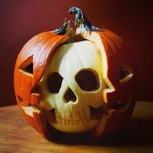 Halloween Pumkins🎃🕯️🧡