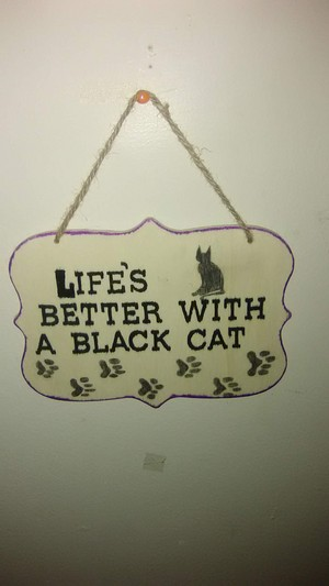 Life is better with a Black Cat.