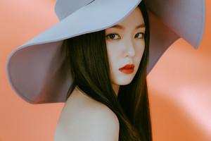 Red Velvet IRENE SEULGI monster