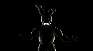 Shadow SpringBonnie