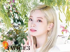 TTwice3 - Special các bức ảnh