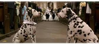 The Wedding 1996 Disney Film, 101 Dalmatians