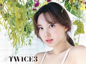 Twice3 - Special 写真