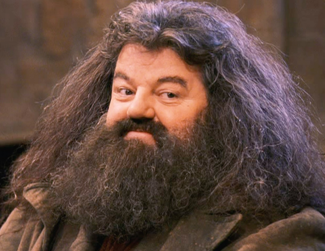 Image result for hagrid smiling