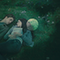 Edward and Bella's meadow scene