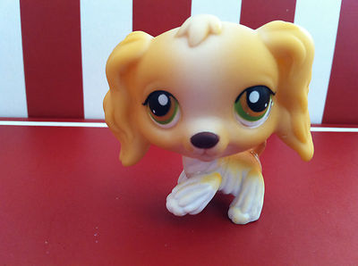 Who From Lps Popular Do You Have Littlest Pet Shop Fanpop